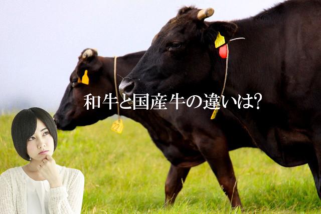 産直和牛と国産牛の通販