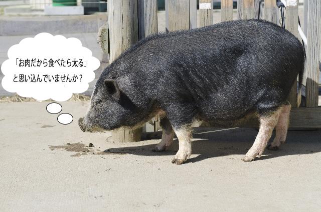 産直厳選豚肉の通販
